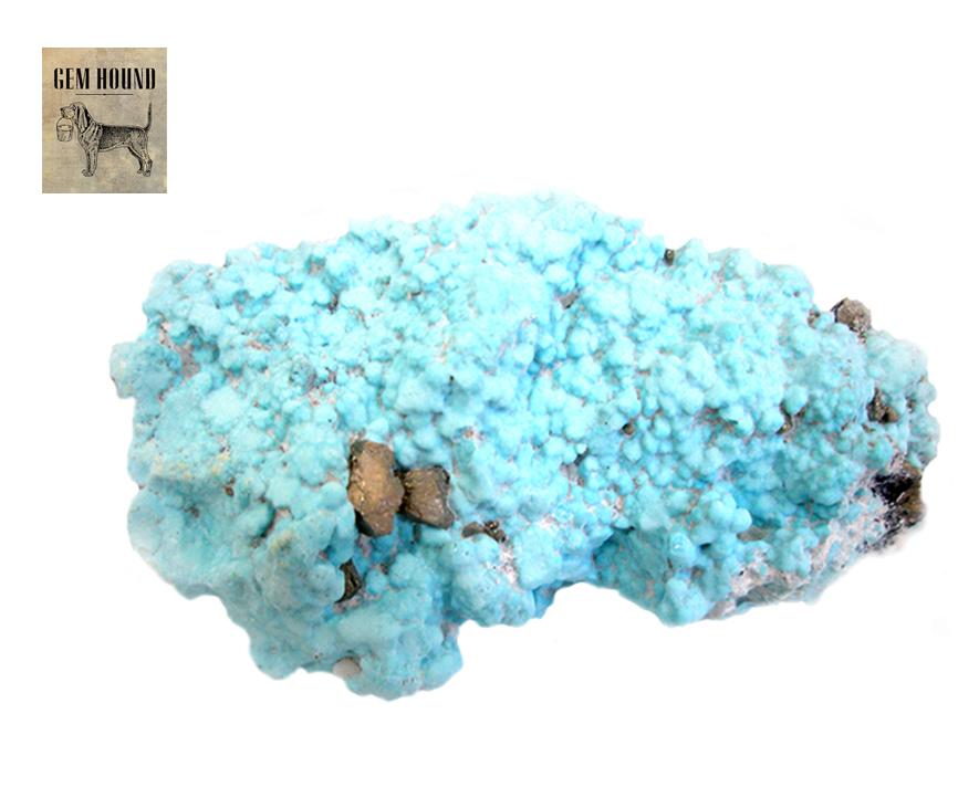 Campitos Turquoise